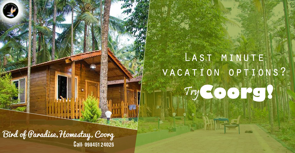 Bird of Paradise - Best Homestay in Coorg